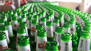 nektar pivo