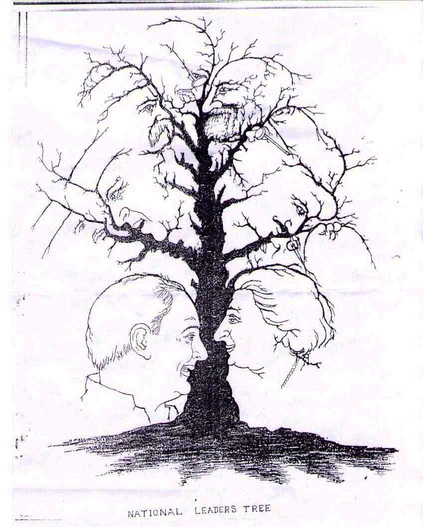 stablo mozgalica